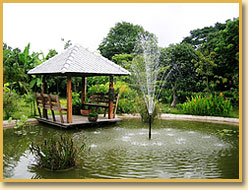 Chiang Mai Lanna House has experience and knowledge in the areas of Real Estate, Service and Management in Chiang Mai.